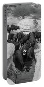 Cows In The Hole Portable Battery Charger