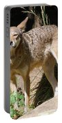 Coyote Grin Portable Battery Charger