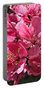 Crab Apple Blossoms 04302015-1 Portable Battery Charger