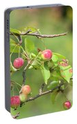 Crab Apple Fruit Portable Battery Charger