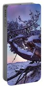 Craters Of The Moon Portable Battery Charger