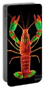 Crawfish In The Dark - Rouillegreen Portable Battery Charger