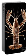 Crawfish In The Dark - Sepia Portable Battery Charger