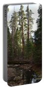 Creek And Giant Sequoias In Kings Canyon California Portable Battery Charger