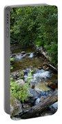 Creek On Mt. Spokane 1 Portable Battery Charger