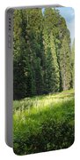 Crescent Meadow In Sequoia Portable Battery Charger