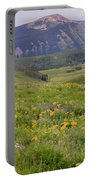 Crested Butte Valley Portable Battery Charger