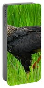 Crested Caracara 3 Portable Battery Charger