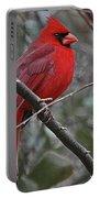 Crimson Cardinal Portable Battery Charger