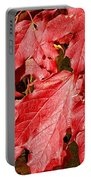 Crimson Fall Portable Battery Charger