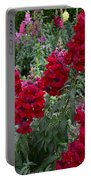 Crimson Snapdragons Portable Battery Charger
