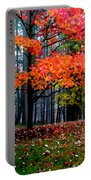 Crimson Tree Portable Battery Charger