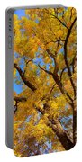 Crisp Autumn Day Portable Battery Charger