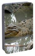 Crocodile Portable Battery Charger
