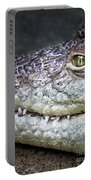 Crocodile Eye Portable Battery Charger