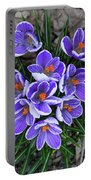 Crocus 6675 Portable Battery Charger
