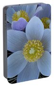 Crocus Blossoms Portable Battery Charger