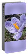 Crocus Explosion Portable Battery Charger