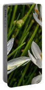 Crocus White Flowers Portable Battery Charger