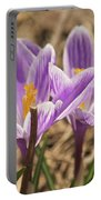 Crocuses 2 Portable Battery Charger