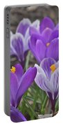 Crocuses 3 Portable Battery Charger