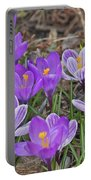 Crocuses 5 Portable Battery Charger