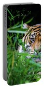 Crouching Tiger Hidden Cameraman Portable Battery Charger