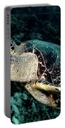 Cruising Hawksbill Portable Battery Charger
