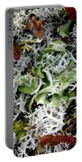Crushed Lichen Portable Battery Charger