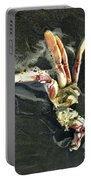 Crustacean On The Shore Portable Battery Charger