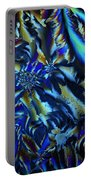 Crystal Blues Portable Battery Charger