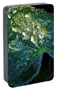 Crystal Lady's Mantle Portable Battery Charger