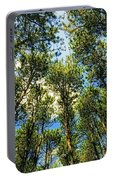 Crystal Lake Il Pine Grove And Sky Portable Battery Charger