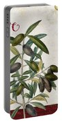 Cucina Italiana Olives Portable Battery Charger