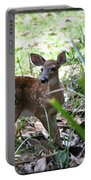 Cumberland Island Deer Portable Battery Charger