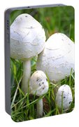 Cumberland Toadstools Portable Battery Charger