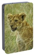 Curious Cub Portable Battery Charger