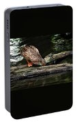 Curious Duck Portable Battery Charger
