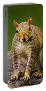 Curious Squirrel Portable Battery Charger