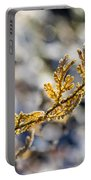 Curled Fern Frond Tip Portable Battery Charger