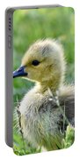 Cute Baby Goose In A Grass Field Portable Battery Charger