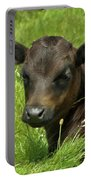 Cute Cow Portable Battery Charger by Terri Waters