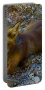 Cute Fox Friend  Portable Battery Charger by Colette V Hera Guggenheim