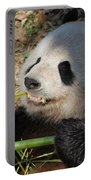 Cute Panda Bear With Very Sharp Teeth Eating Bamboo Portable Battery Charger