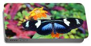 Cydno Longwing Butterfly Portable Battery Charger