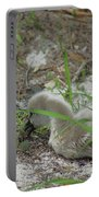 Cygnets I Portable Battery Charger