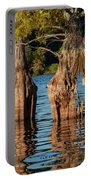 Cypress Grove One Portable Battery Charger