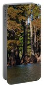Cypress Grove Five Portable Battery Charger