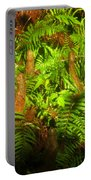 Cypress Knees In Ferns Portable Battery Charger