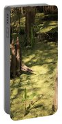 Cypress Knees In Green Swamp Portable Battery Charger